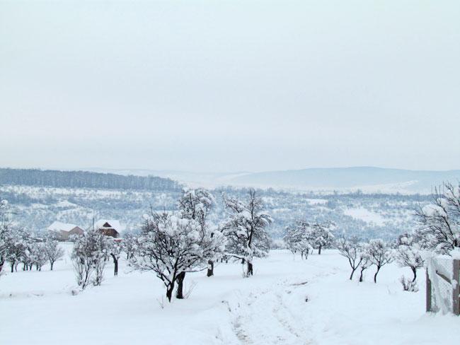 Iarna in Marginimea Sibiului 3 - Pensiunea Printul Vlad